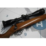 CZ .22LR 452 W/ Scope + Mod